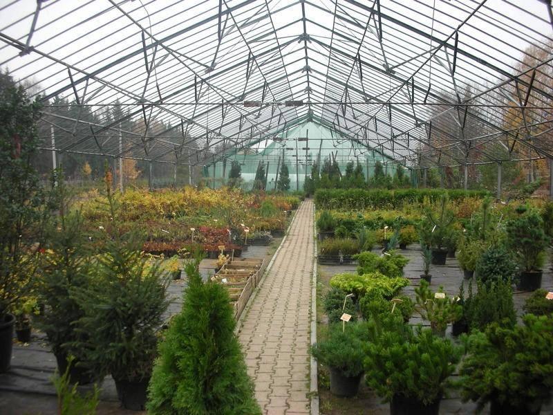 Необходимое оборудование для питомников растений.