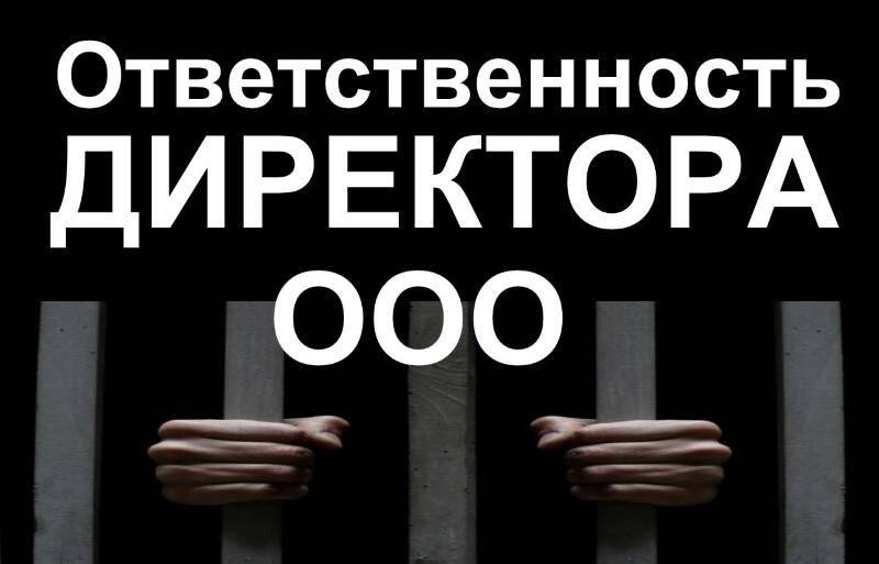 Ответственность директора ООО по долгам юридического лица.