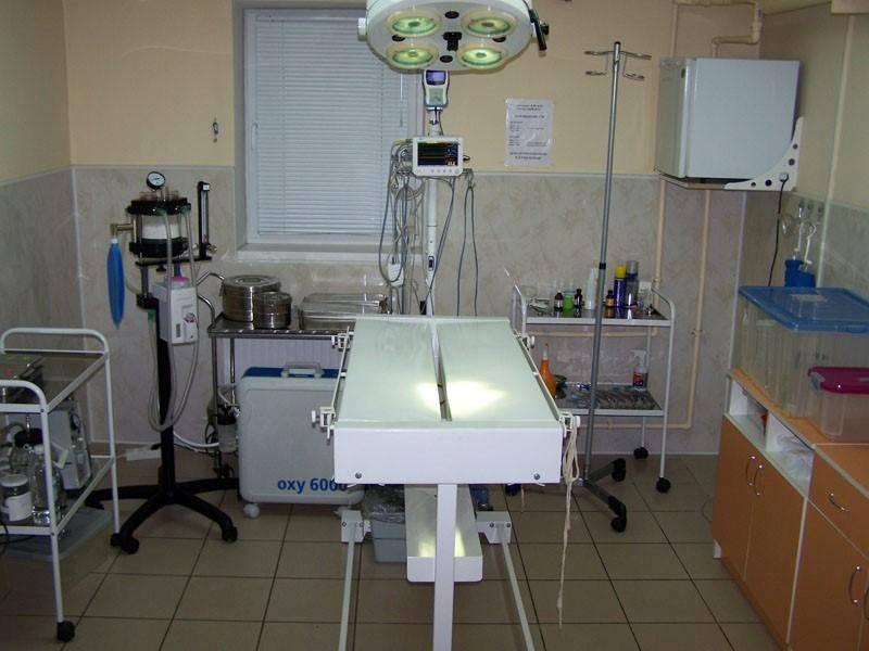 Оборудование для ветеринарной клиники.