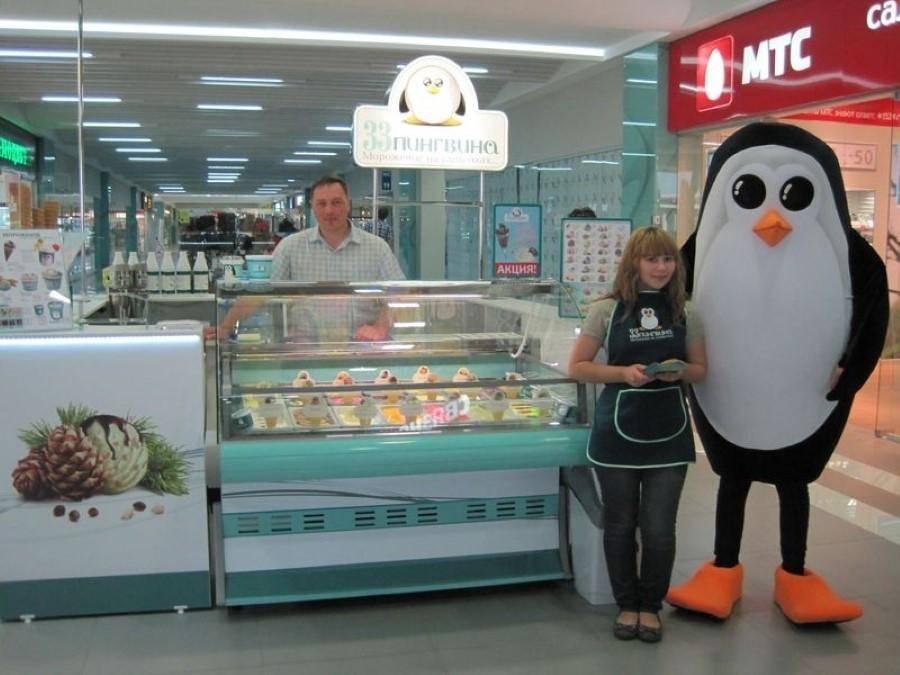 Франшиза 33 пингвина: условия и стоимость в России.