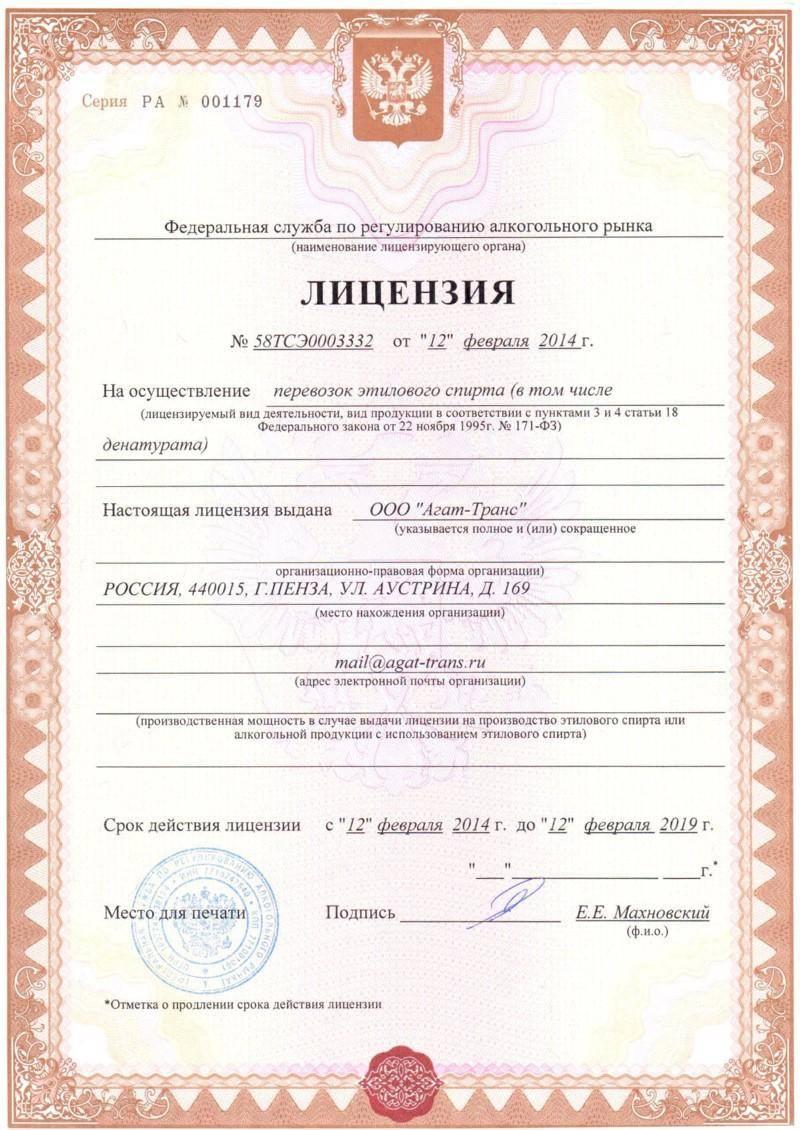 Образец лицензии на