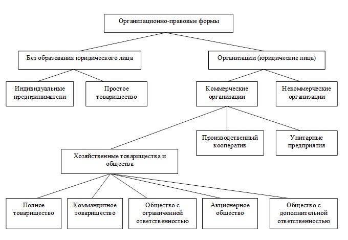 Схема: Основные организационно-правовые формы.
