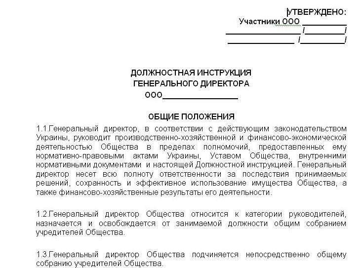 Должностная Инструкция Заместителя Генерального Директора Ооо Образец 2015 - фото 6