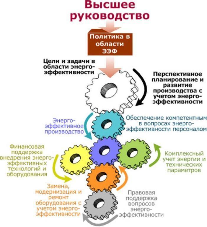 Должностная инструкция генерального директора котельного предприятия