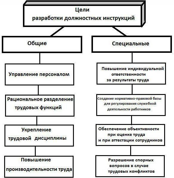 Должностная инструкция схема разработки