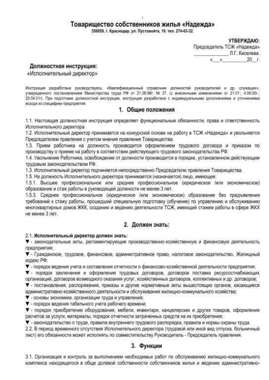 Должностная инструкция исполнительного директора компании описание
