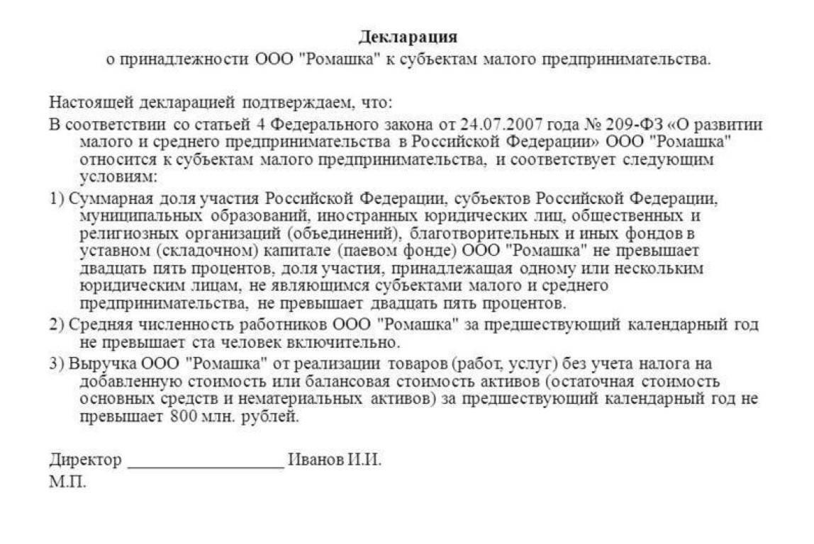 Пример декларации о принадлежности к СМП.